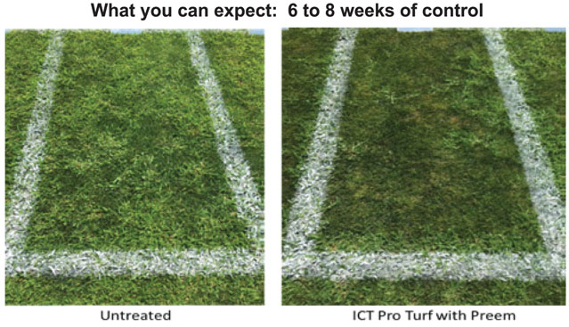 ICT Pro Turf 10-0-2 with Weed Control
