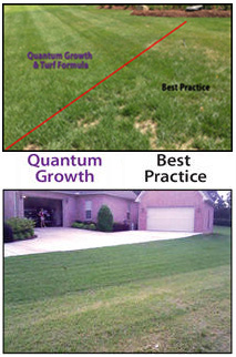 Quantum Growth MicrobeLife Organic Biological Products Home Lawn & Garden Results