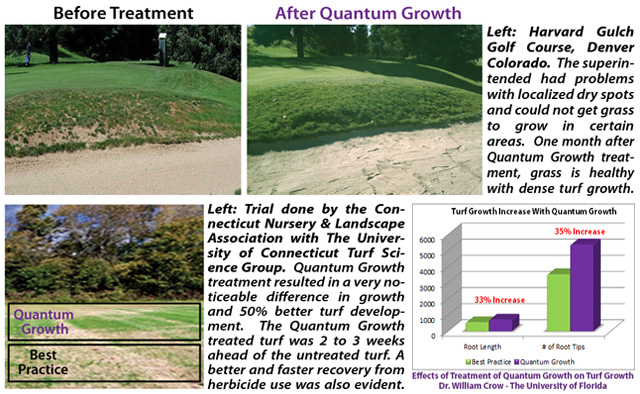 Quantum Growth Trials And University Study Results Turf