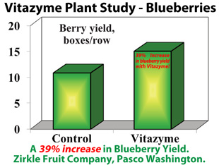 Vitazyme Proven Trial Results Blueberries