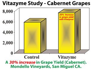 Vitazyme Proven Trial Results Vineyard Grapes